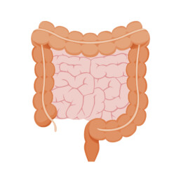 Verbeter je microbioom